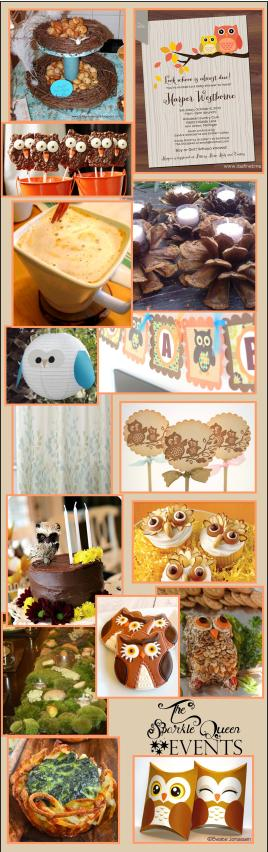 Rustic Owl Baby Shower {Mostly DIY}