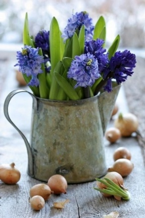 Purple Hyacinth Watering Can Centerpiece – spotted on Pinterest