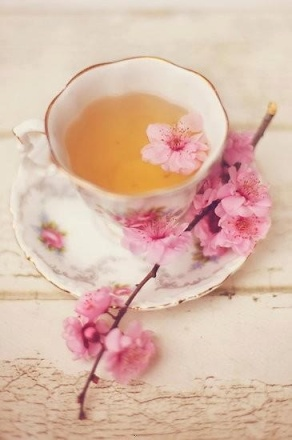 Tea Cup with Cherry Blossom – spotted on Pinterest