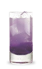 Grape Crush Cocktail – shared on Complete Cocktails