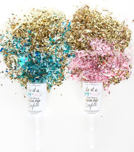 Confetti Filled Gender Reveal Push-Pop – made by thimblepress on Etsy