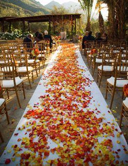 Fall Leaves Wedding Aisle – shared on Brides.com