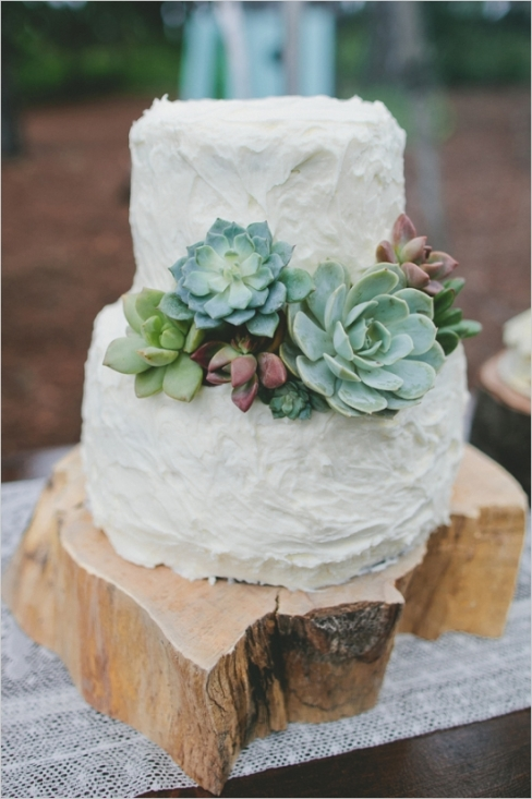 Succulent Decorated Wedding Cake – shared on The Wedding Chicks