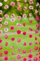 Carnation Backdrop Tutorial – shared by A Practical Wedding