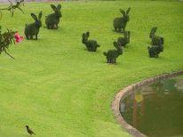 Topiary Bunny Yard – shared on POPSUGAR