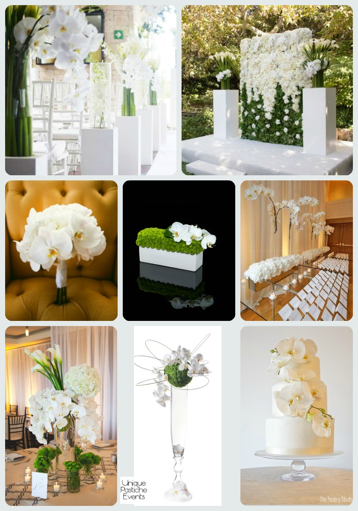Modern White Orchid Outdoor Wedding See the full post with all the details here: https://uniquepasticheevents.com/2016/04/13/modern-white-orchid-outdoor-wedding-ideas/