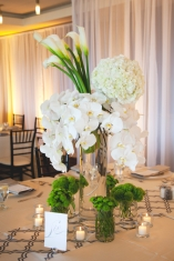 White Orchid, Hydrangea, and Calla Lily Centerpiece with Pops of Green – shared by Elizabeth Anne Designs