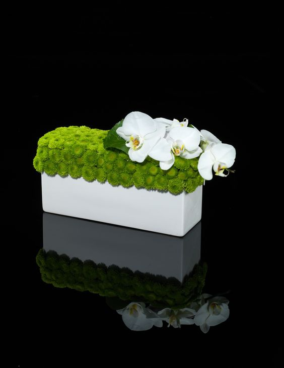 White orchids and green accent flower modern centerpiece
