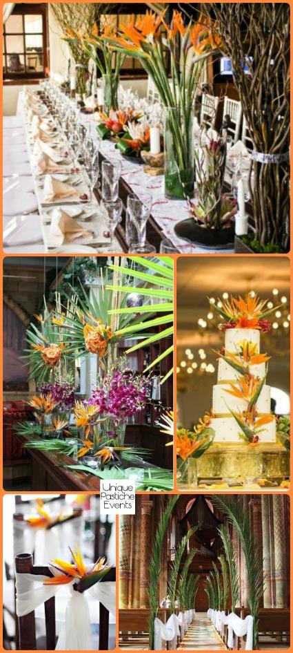 Bird of Paradise Tropical Wedding