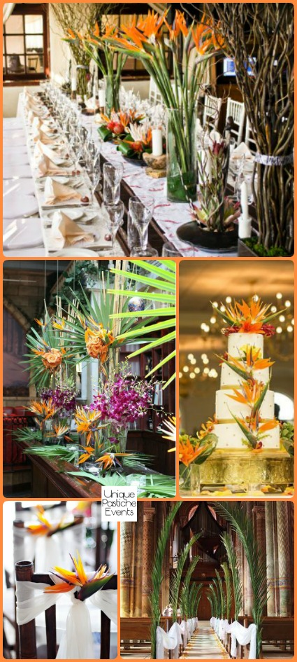 Bird of Paradise Tropical Wedding