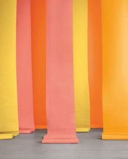 Crate Paper Backdrop in Citrus Hues - featured in a roundup post by Babble