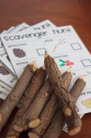 Backyard Scavenger Hunt – shared on Apartment Therapy