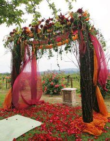 Plum and Burnt Orange Ceremony Vine Covered Altar and Mandap Overlooking Vineyard