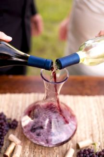 Vineyard Wedding Wine Pouring Ceremony – shared by Floridian Social