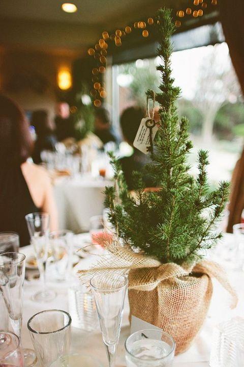 Burlap Wrapped Fir Tree Christmas Centerpiece – shared in a roundup post on Happy Wedd