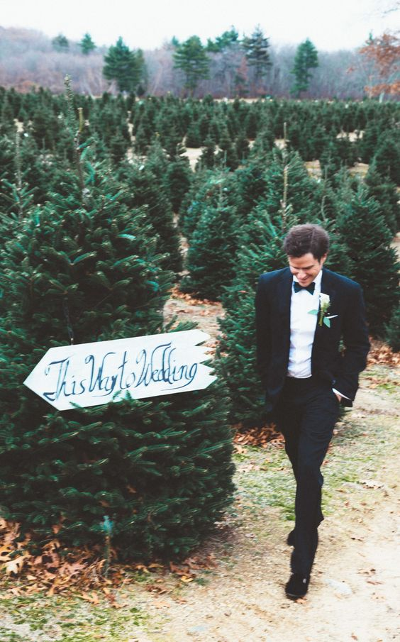 Christmas Tree Farm Wedding Sign – featured on Town and Country Magazine