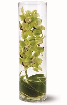 Simple Green Orchid Centerpiece – shared on Gift Hampers