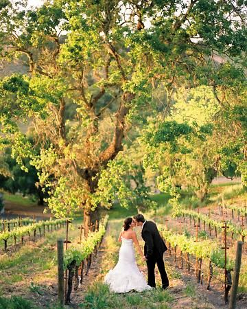 Outdoor Wedding in a Vineyard – shared on Martha Stewart Weddings