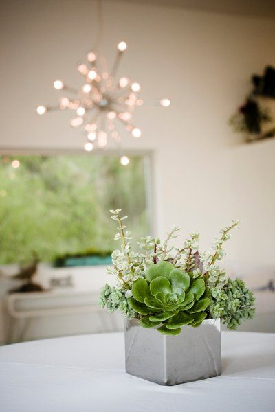 Small Concrete Block with Succulents Centerpiece for a Cocktail Table – shared on WeddingWire