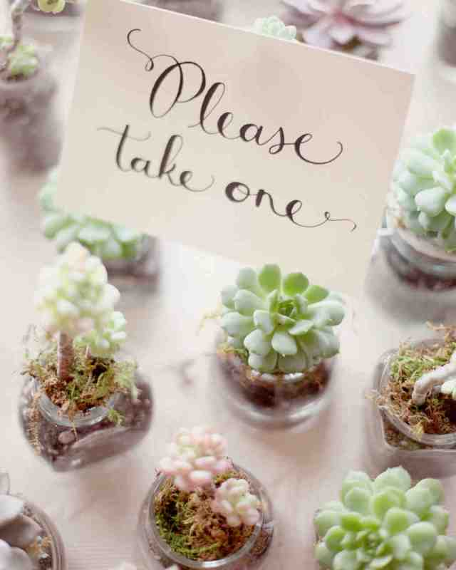 Small Succulent Party Favors in Glass – shared on Martha Stewart Weddings