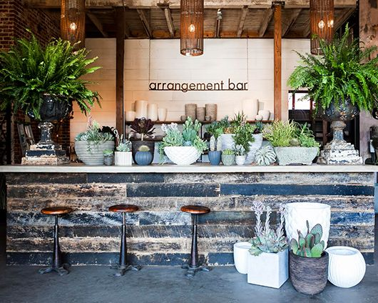 Succulents Arrangements Bar – shared by SF Girl by Bay