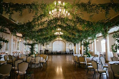 Ballroom Ceiling Covered in Growing Green Vines and Fairy Lights